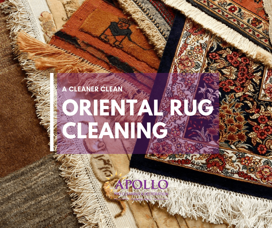 Oriental Rug Cleaning Steubenville OH